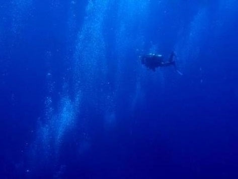 Diving the blue